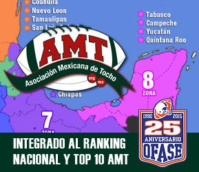 visita amt.org.mx